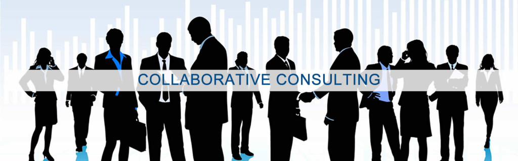 Management Consulting | Strategic Growth Sales Consultant